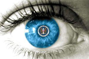 nsa_eye